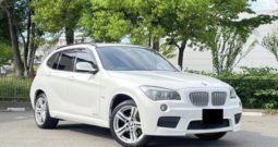 BMW X1 SERIES 2012  PACKAGE 250i